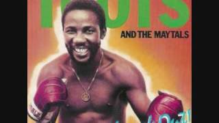 Video Toots & The Maytals - Never Get Weary MP3, 3GP, MP4, WEBM, AVI, FLV November 2018