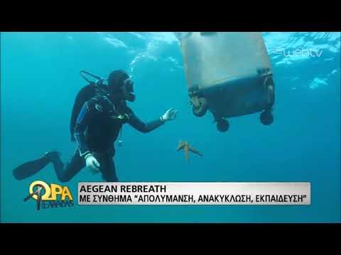Αγώνας ενάντια στην «πλαστικοποίηση» των θαλασσών | 28/05/19 | ΕΡΤ