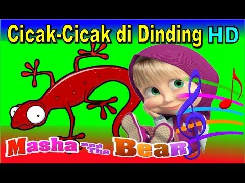 Download Video Cicak Cicak Di Dinding ✰ Masha & The Bear ✰ Lagu Anak Indonesia Populer