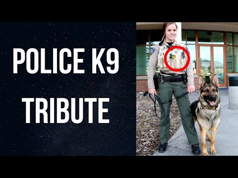Best of K9 Compilation - A Tribute to Police Dogs
