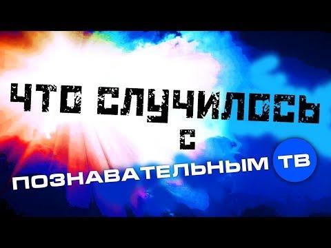 Что случилось с Познавательным ТВ и куда пропал Войтенков - DomaVideo.Ru
