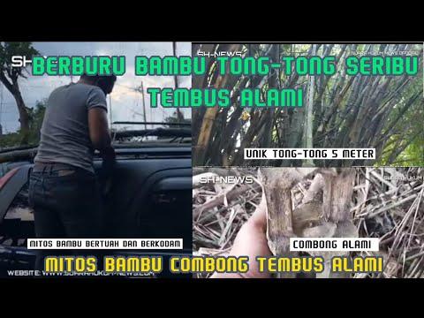 Langka, Proses Pemotongan Bambu Combong Kategori Bertuah