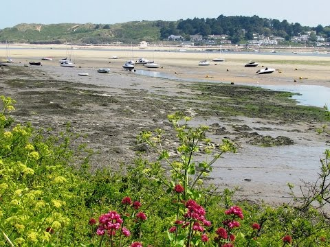 Camel Trail to Padstow round | cornwall  Walks