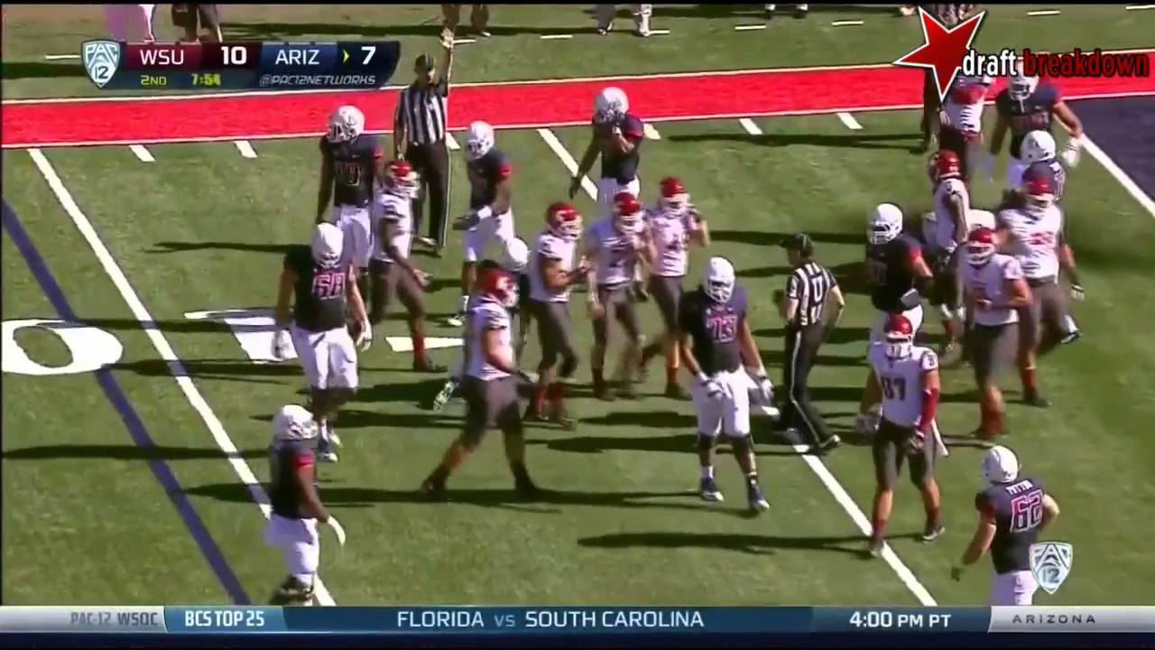 Ka'Deem Carey vs Washington State (2013)
