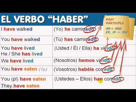 'Haber' As an Auxiliary Verb: It's Perfect! [1/8]