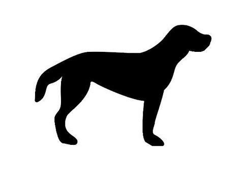 Fwd: [Nueva entrada] Siluetas de animales domésticos ...