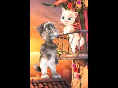 Tom cat trolling Asma funny video in urdu/punjabi