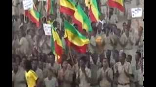 MUST WATCH TPDM GRADUATED ITS FIGHTERS BY MILITARY AND POLITICAL COURSE