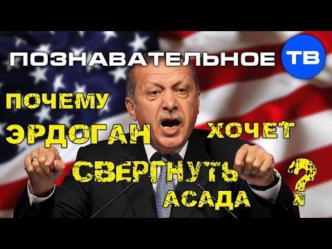 Почему Эрдоган хочет свергнуть Асада (Познавательное ТВ Артём Войтенков) - DomaVideo.Ru