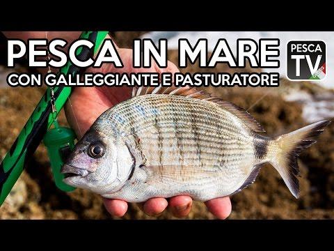 Pesca in Mare con Galleggiante e Pasturatore