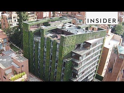 Beautiful Vertical Garden in Columbia