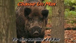 Tir D'un Gros Sanglier De 113 Kg / Chasse Au Sanglier 2014/2015
