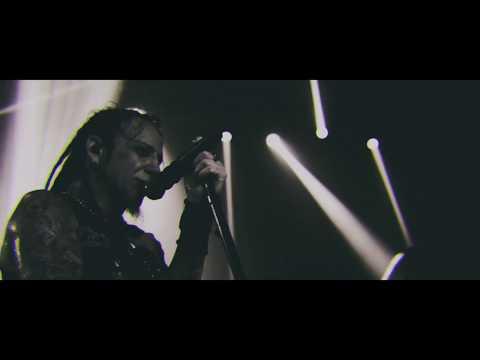 Love Falls Live Video