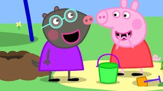 Download Video Peppa Pig English Episodes 🎄New Friend! Molly Mole 🎄 Peppa Pig Christmas | Peppa Pig Official MP3 3GP MP4