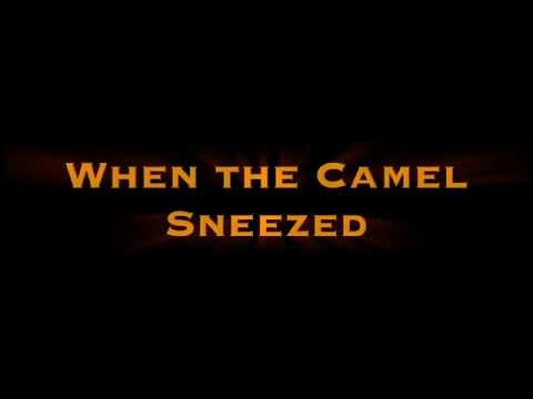When the camel sneezed