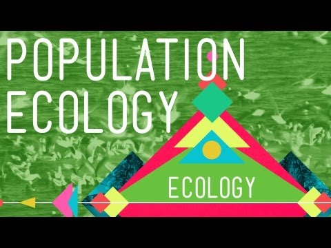 Populationsökologie: The Texas Mosquito Mystery - Crash Course Ecology # 2