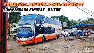 Video NEW!!! Detik-Detik Kedatangan Bus SDD Harapan Jaya di Pool Ciputat MP3, 3GP, MP4, WEBM, AVI, FLV Agustus 2018