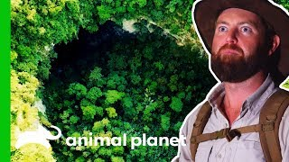Will Forrest Find An Asian Unicorn In The World's Largest Cave?   Extinct Or Alive? by Animal Planet