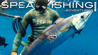 Spearfishing Adventures present a HD video production in association with Deep Blue. The following PREVIEW is not suitable for ...