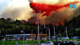 Haifa Israel  city pictures gallery : Israel burning, thousands flee as wildfire hit Haifa