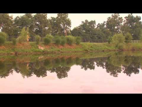 Farm Pond Fishing in Lexington