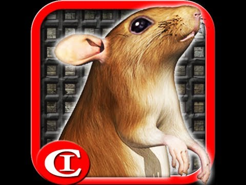 Video of Sewer Rat Run 3D HD