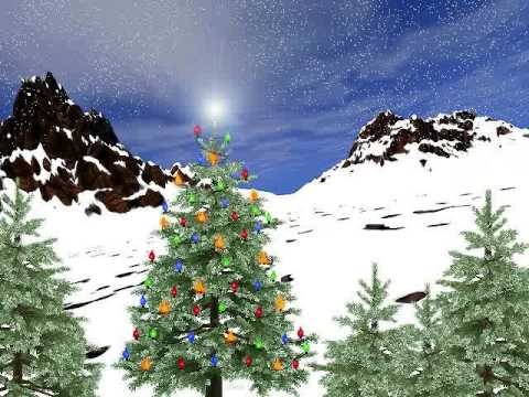 bellame brothers, Old hippie Christmas