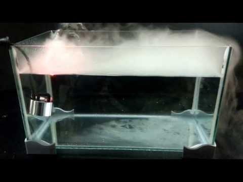 Nebulizzatore per rettili