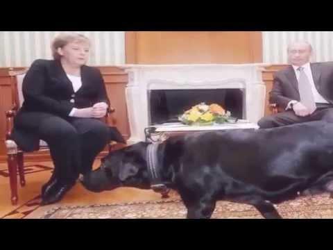 10 أمور يجب ان تعرفها عن فلادمير بوتين