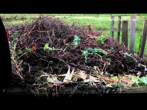 Sustainable Gardening Tips Composting – Learn Sustainable Gardening Tips for Composting