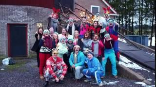 Lucka 21: God Jul från Finlands Ekonomer!