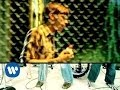 Spustit hudební videoklip The Von Bondies - C'mon C'mon (Video)