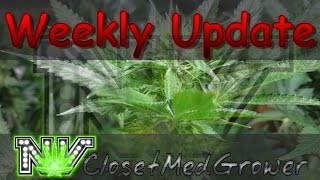 Weekly Update 10/12/2016 by  NVClosetMedGrower