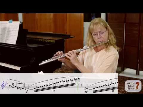 Flute Lesson - How to Play Loud and Soft on the Flute