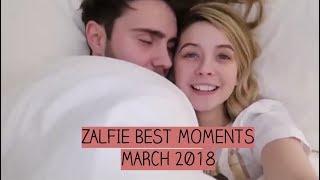Video Zalfie Best Moments | MARCH 2018 MP3, 3GP, MP4, WEBM, AVI, FLV Oktober 2018
