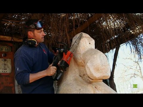 A Lesson in Chainsaw Carving | Redwood Kings