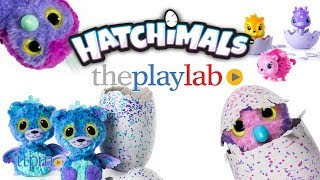 Hatchimals from Spin Master