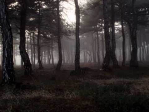 Forest - Seventeen Seconds (1980)