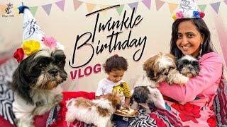 || Twinkle Birthday Celebrations || Lasya Manjunath New Video