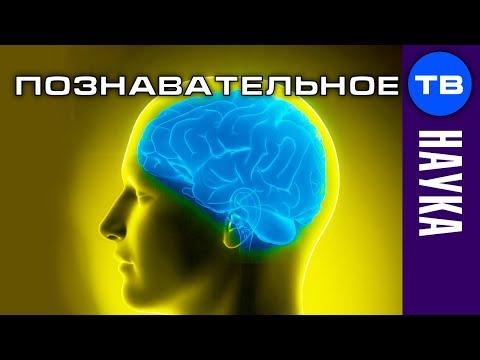 Виртуальность мозга: программирование реальности (Познавательное ТВ Дмитрий Мыльников) - DomaVideo.Ru