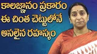 Video Sri Pothuluri Veerabrahmendra Swamy Secrets || Brahmam Gari Kalagnanam || Ramaa Raavi || SumanTV MP3, 3GP, MP4, WEBM, AVI, FLV Maret 2019