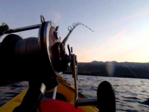 Kayak Fishing Hawaii – EVERYDAY MAHIMAHI