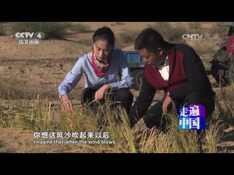 《走遍中国》 20170602 大漠变稻田 | CCTV-4