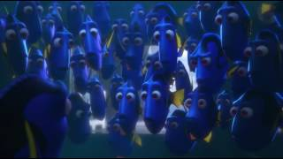 Nonton Finding Dory    Reunion   Getting Caught Scene Film Subtitle Indonesia Streaming Movie Download