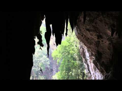 Tham Lot, Pang Mapha, Northern Thailand (видео)