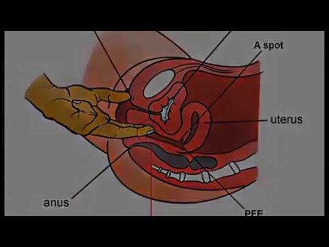 Vaginal Orgasm Techniques
