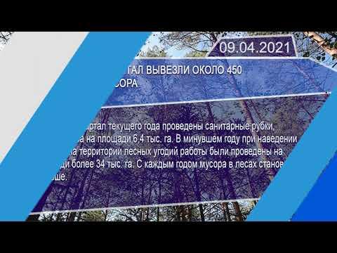 Новостная лента Телеканала Интекс 09.04.21.