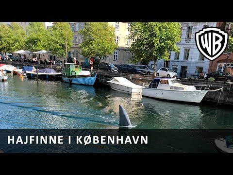 The Meg - Kæmpe hajfinne spottet i København!