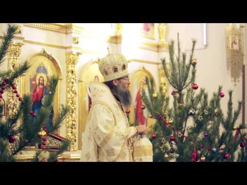 2015.01.06 - Владыка Лука в преддверии Рождества