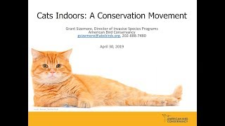 Cats Indoors:  A Conservation Movement